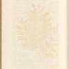 No. 54: The wild olive tree; The savine tree; Wall-fern or polypody of the oak; Spleen wort