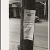 Notices of death, Saint Martinville, Louisiana. This is a very common custom to post these notices in the Southern states.