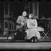 Flora, the Red Menace, original Broadway production