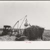 Loading sugarcane, Louisiana.