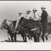 Judges at Bean Day rodeo, Wagon Mound, N.M.