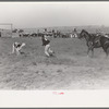 Cowboy running to tie calf after he has roped him, Bean Day rodeo, Wagon Mound, N.M.
