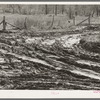 Intersection of muddy roads. McIntosh County, Oklahoma