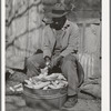 Pomp Hall, Negro tenant farmer, shelling seed corn. Creek County, Oklahoma