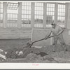 Workman at wool scouring plant pushing wool into hopper which feeds scouring machine on floor below. San Marcos, Texas