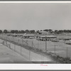 Poultry yard and houses at the Arizona part-time farms. Maricopa County, Arizona
