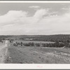 Character of farming country and distant view of Chilili. Bernalillo County, New Mexico