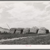 Stacks of hay on farm. Cornish, Utah
