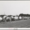 Housing for white transient workers at Giffen Ranch. Southwest Mendota, California