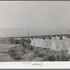 Housing for white transient workers of Giffen Ranch. Southwest Mendota, California