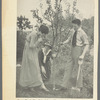 Publicity photograph of Peggy Wood, Rida Johnson Young and Charles Purcell planting a tree during the stage production  Maytime as published in Theatre Magazine, July 1918