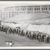 Hagenbeck-Wallace Circus. Cheerful Gardner and his Bulls [at Yankee Stadium]