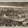 Ringling Bros and Barnum and Bailey Combined Circus [at the Bronx Coliseum]