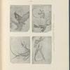 École Normale (filles), travaux d'élèves: I. Exercice de pinceau - II. Dessin calqué - III. Dessin copié - IV. Composition, p. 19