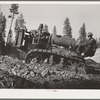 Grant County, Oregon. Malheur National Forest. Caterpillar tractor used in lumbering