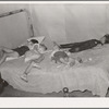 Children asleep on bed at square dance in hills near McAlester on Saturday night in home of sharecropper. Oklahoma, Pittsburg County