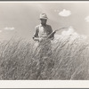 FSA (Farm Security Administration) supervisor, Baca County, Colorado, standing amidst some of the grass which was native to this section before the plow came along