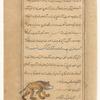 Ursa Minor (al-Dubb al-Asghar), f. 24