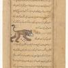Ursa Major (al-Dubb al-Akbar), f. 24v