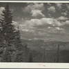Teton National Forest, Wyoming.