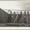 Carpenters at work on barracks for Resettlement Administration construction camp. Oneida County, Idaho.