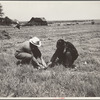 Rehabilitation client and county supervisor discuss planting problems. Cherokee County, Kansas