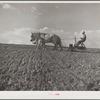 Planting corn. Lancaster County, Nebraska