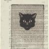 Tête de chat noir