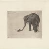 Le singe et l'elephant