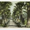 The Park, Long Beach, Calif.