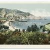 View, Avalon, Santa Catalina, Calif.