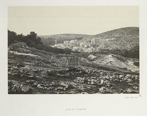 View at Hebron