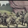 Performing elephants.