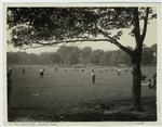 Boys' playground, Central Park, New York.