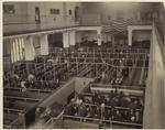 Immigrants at Ellis Island, N.Y.