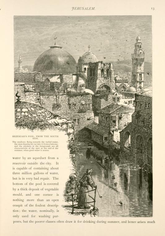 in 1881