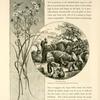 David's Well.  Bethlehemite women filing goat-skins and water-jars