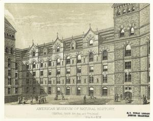 American Museum of Natural History, Central Park 8th Ave. and 77th Street.