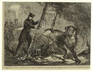Thrilling scene at Barnum's American Museum, New York City, on the 3d inst. -- the royal bengal tiger leaps from a window into Broadway, and is shot by a policeman.