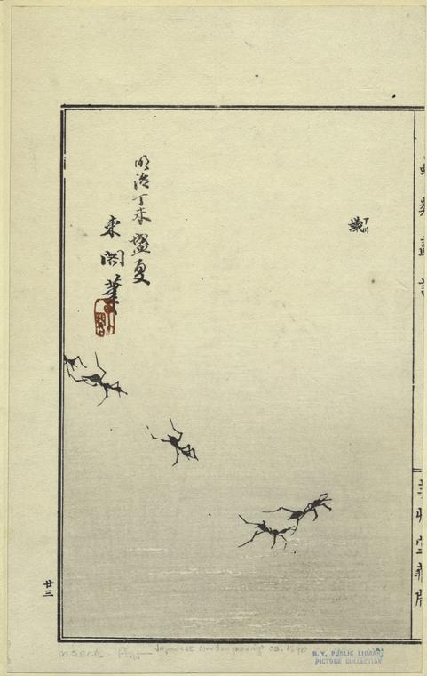 [Japanese wood engraving of ants.]