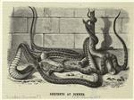 Serpents at dinner.