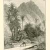 Wâdy Feirân. Professor Palmer describes the walk through Wâdy Feirân, with its shade of palms, tamarisksm and sidr-trees, and with its running water, as one of the most delightful in Sinai.