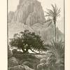 Wâdy T'lâh, Mount Sinai. This wâdy runs parallel with the plain Er Râhah. but flows in a contrary direction.  It is marvellously beautiful and picturesque.