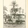 A village threshing floor.  Showing a primitive threshing-sledge drawn by buffaloes, and a peasant separating the chaff from the grain with a winnowing fork.  The huts of the village are formed of mud and sun-dried bricks, roofed with palm tree rafters thatched with stalks of Indian corn, palm leaves, and old mats.  The dark patches on the mud walls represent cakes of fuel made of dung and straw ; when thoroughly dry they are stored for use.