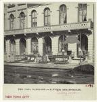 The Casa Napoleon--Janvie