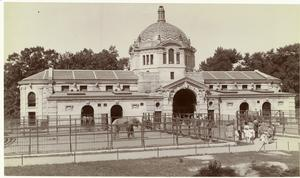 Bronx Zoo (c1911).