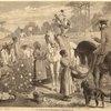 La récolte du coton sur une habitation de l'Amérique du Sud.