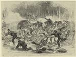 The Civil War in America : the stampede from Bull Run.