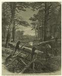 Sherman's march through South Carolina -- road at the swamp crossings.
