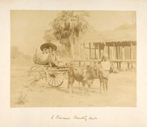 A Burmese country cart.